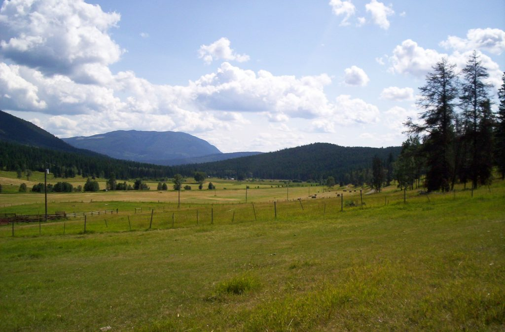 View of the Valley from Dagmar's House